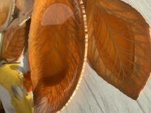 Золотые листья осени